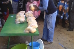 Poultry training Butha-Buthe